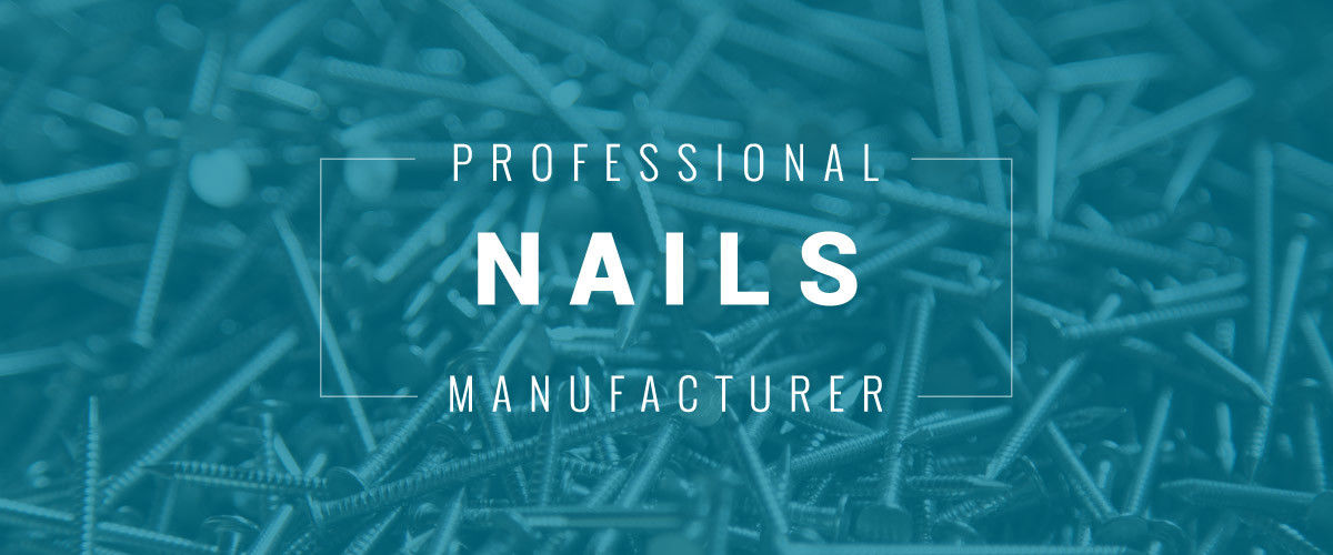 China best Stainless Steel Nails on sales