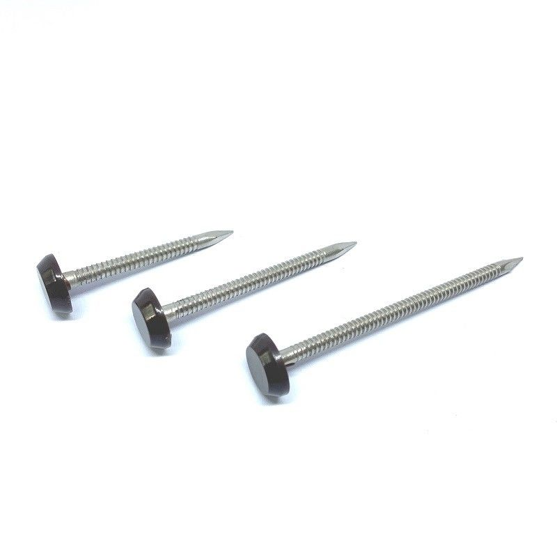 RAL9005 Black 50mm Plastic Head Nails A4 Stainless Steel Ring Shank Nail