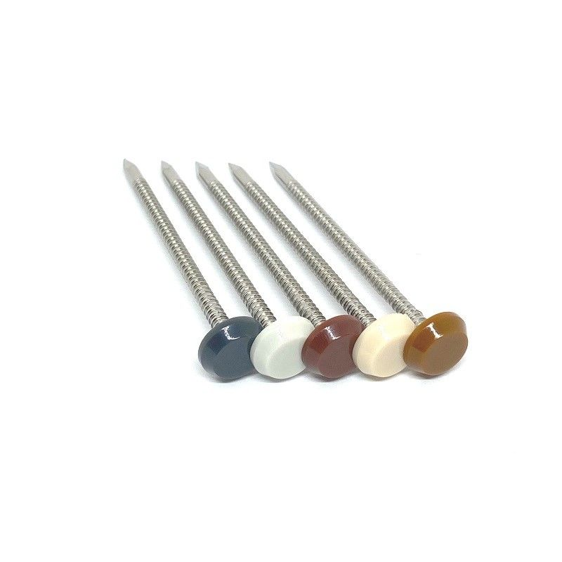 50MM 65MM Nylon PA6 Plastic Headed Nails For Profile